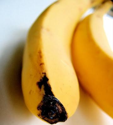close up of banana