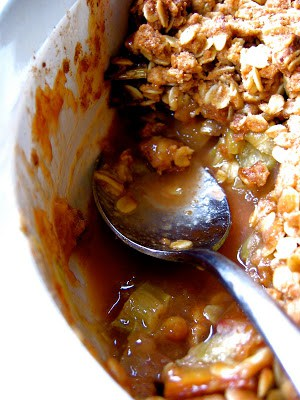 dish with rhubarb crisp  and spoon