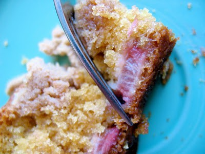 Rhubarb Coffee Cake with fork