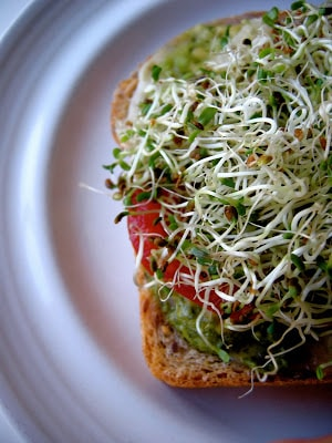 multigrain bread with sprouts