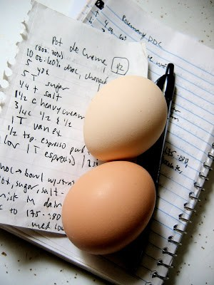 eggs on a notebook