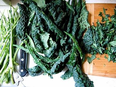 top down shot of kale