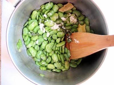 fava beans in a pot