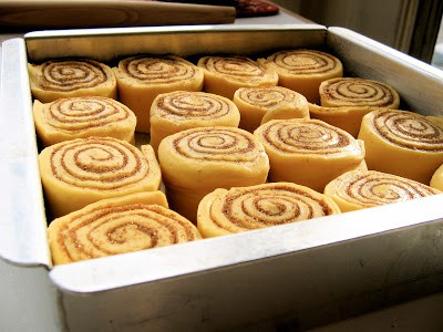rolls before baking
