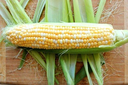 corn on the cob on a board