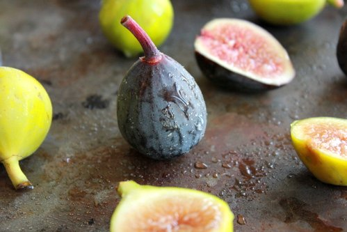 close up of fig
