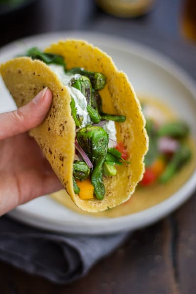hand holding taco