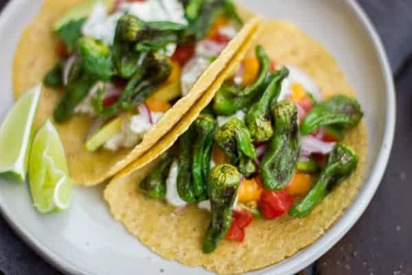 delicious Padron Pepper and Goat Cheese Tacos