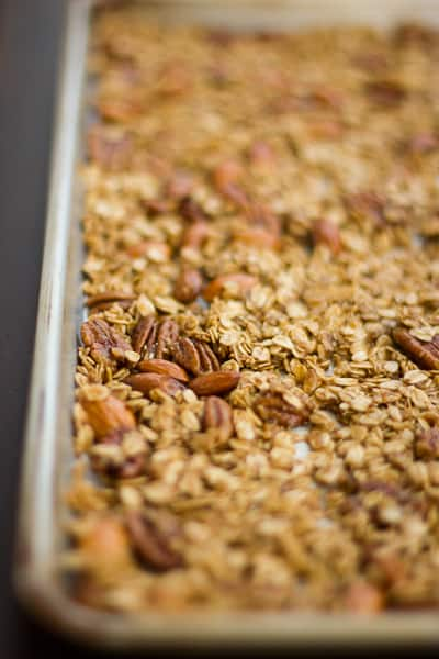 close up of Gingersnap Granola