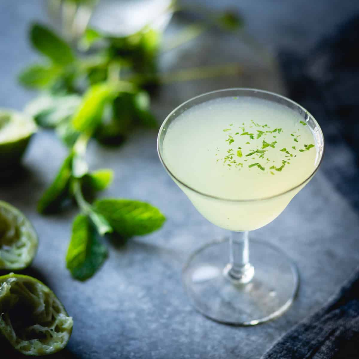 glass of Verdant Lady {Chartreuse, Gin & Mint Cocktail}
