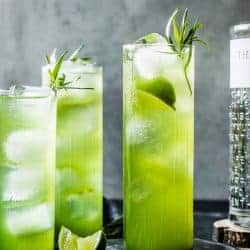 Tarragon Gin & Tonics