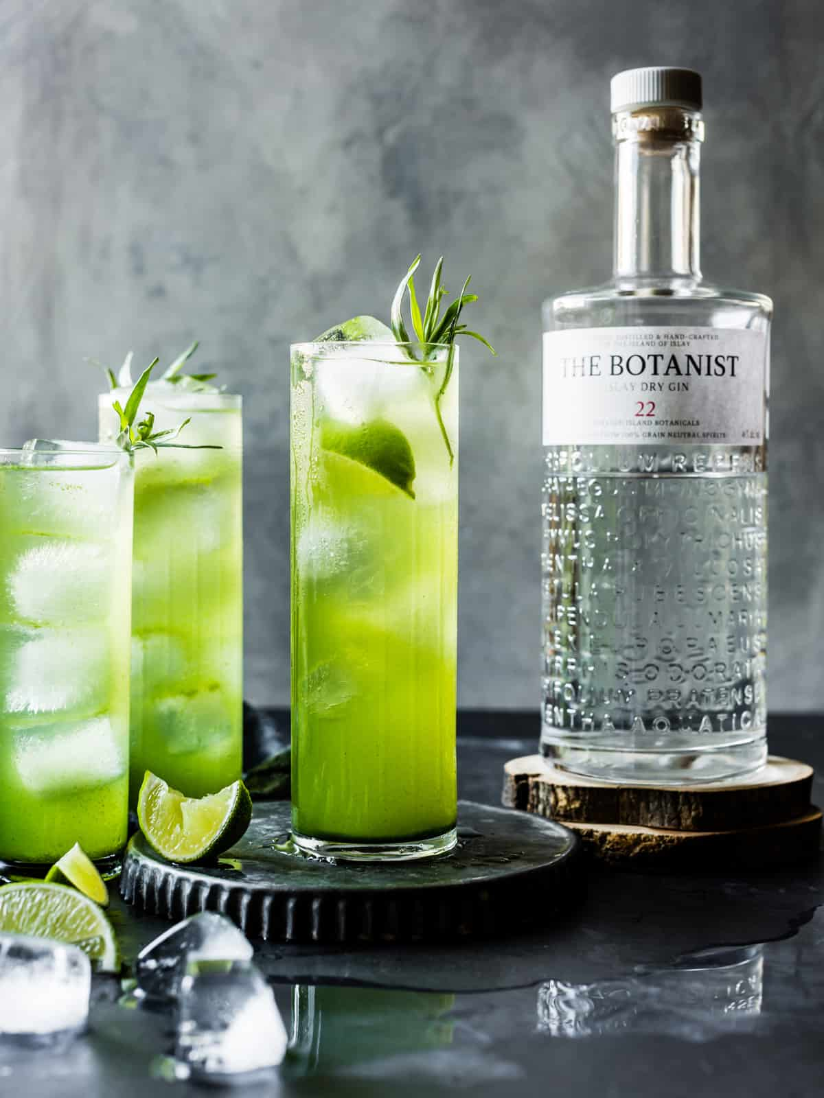 3 Tarragon Gin and Tonics