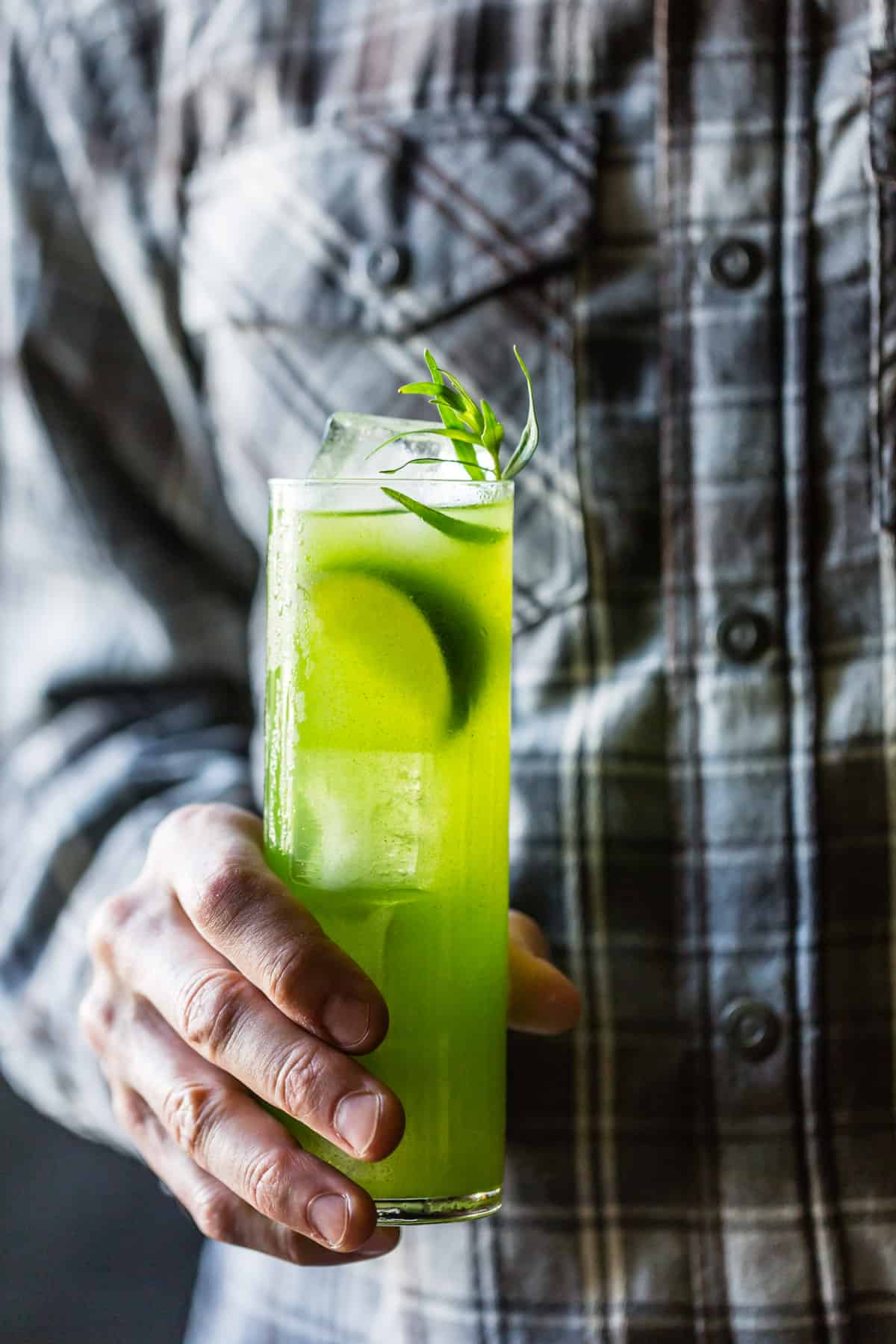Tarragon Gin and Tonic