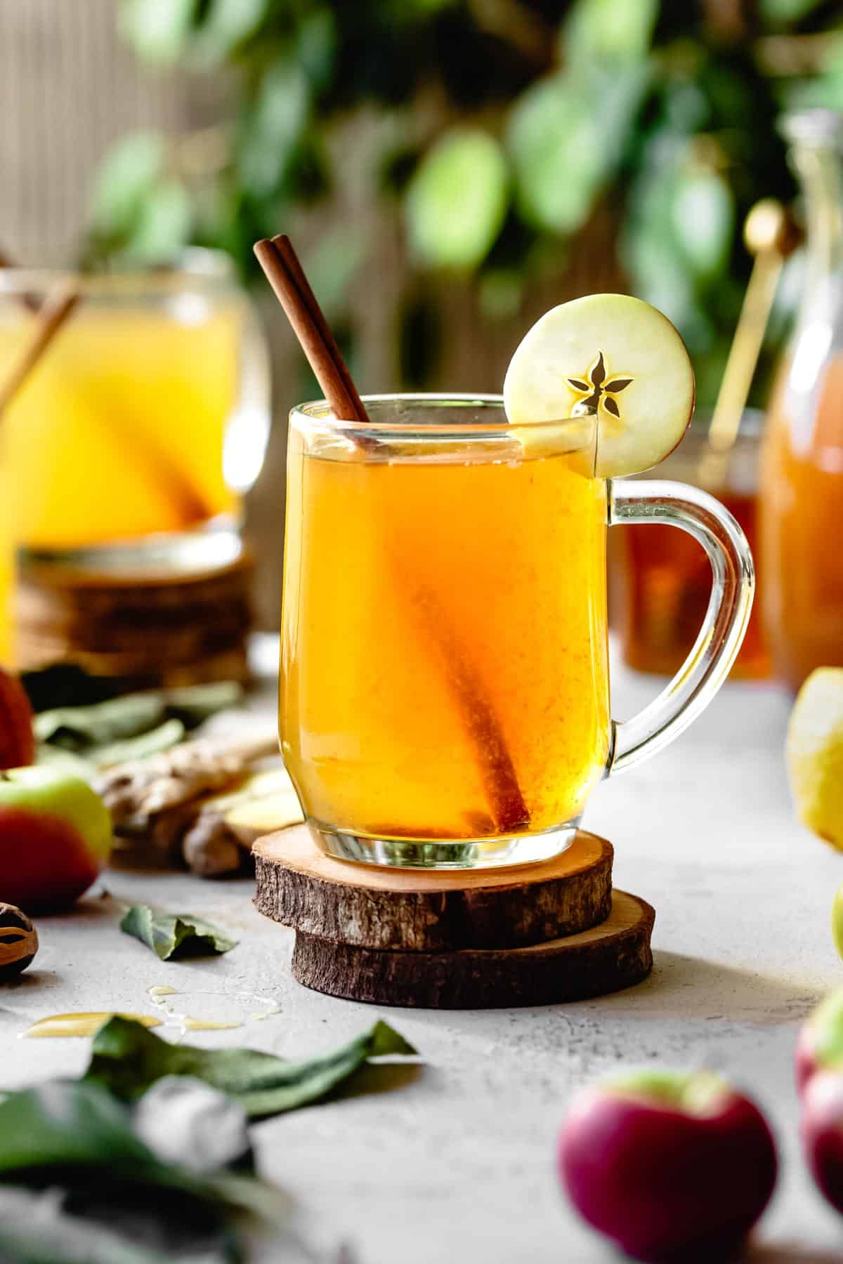Honey Vodka & Apple Cider Hot Toddy Recipe